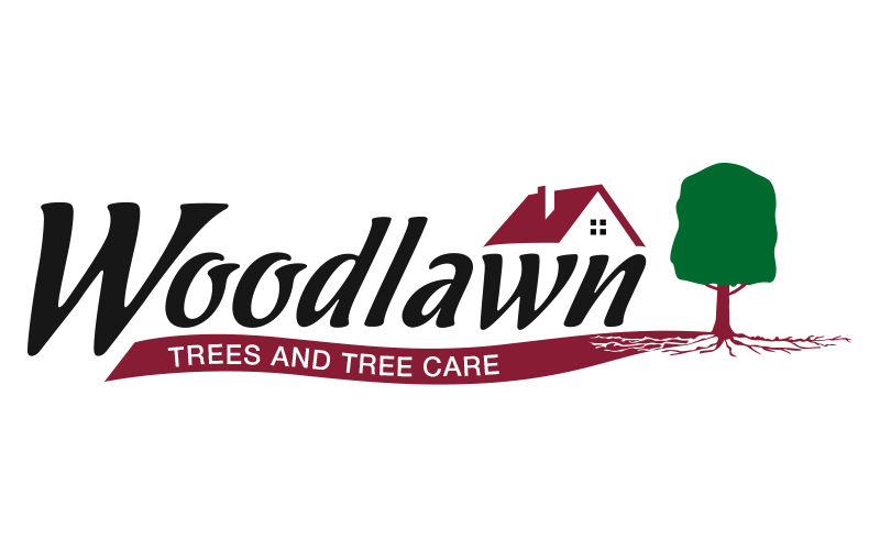 Woodlawn Tree Logo