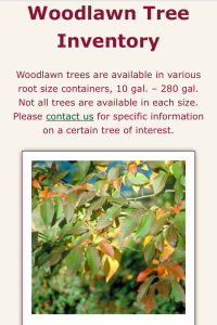 Woodlawn Trees website inventory page on mobile