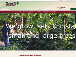 Woodlawn Trees website home page on desktop