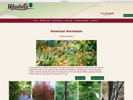 Woodlawn Trees website tree page on desktop